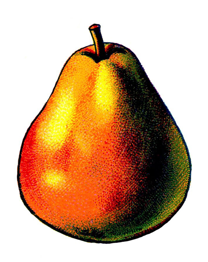 red pear vintage clipart