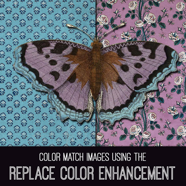 PSE Tutorial Color Match Images Using the Replace Color Enhancement