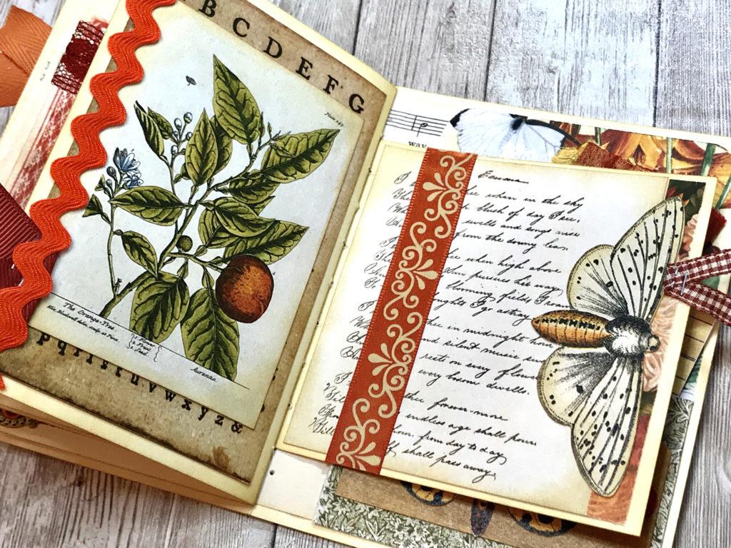 orange botanical ric rac moth image journal page