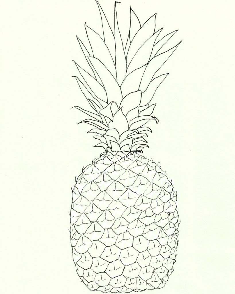 pineapple line art illustration