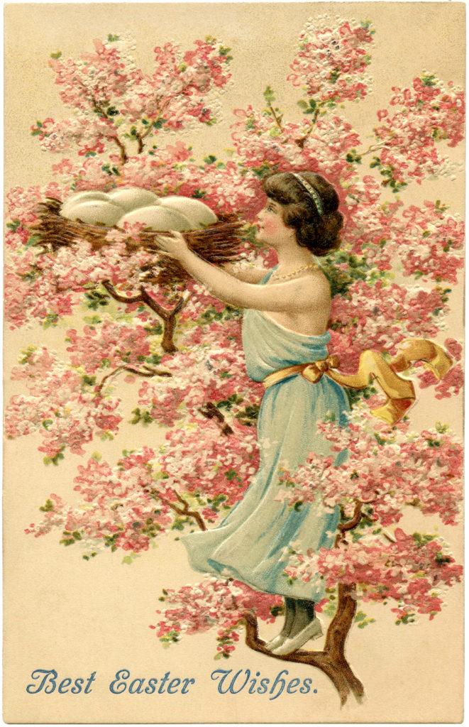 cherry blossom girl nest eggs illustration