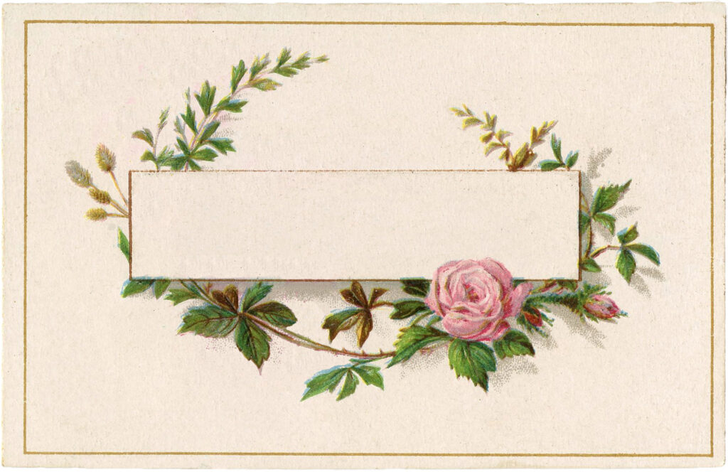 french pink roses label image