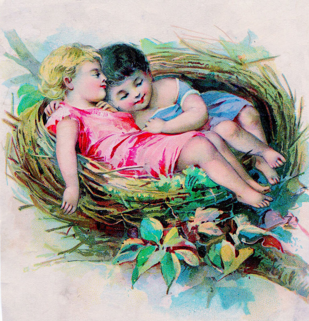 children sleeping nest image
