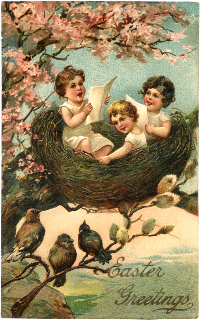 children playing nest birds illustration