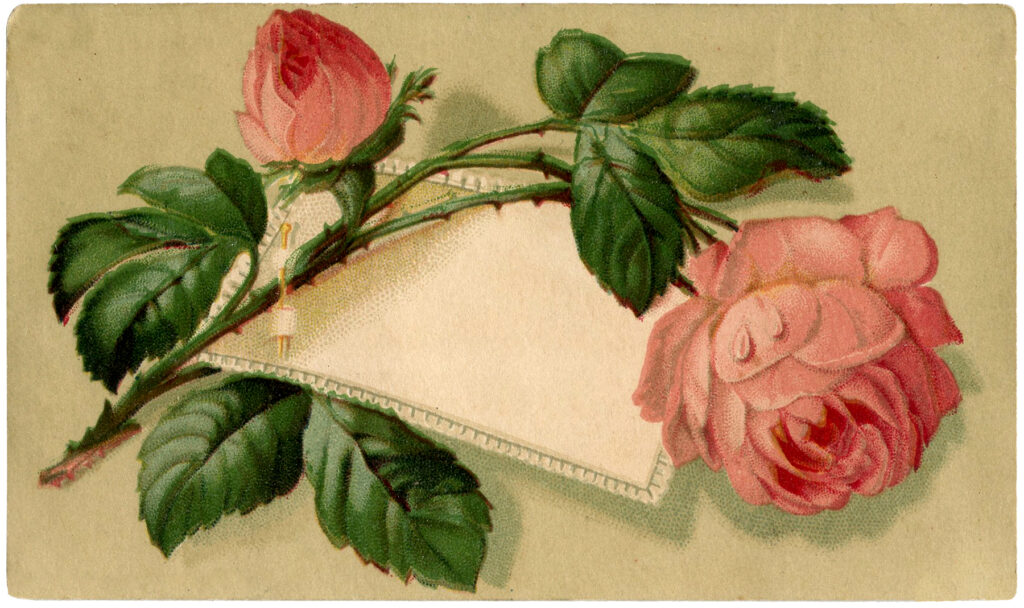 vintage pink rose label