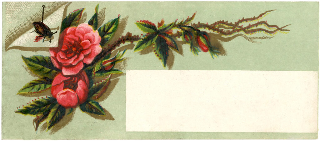 vintage roses label illustration