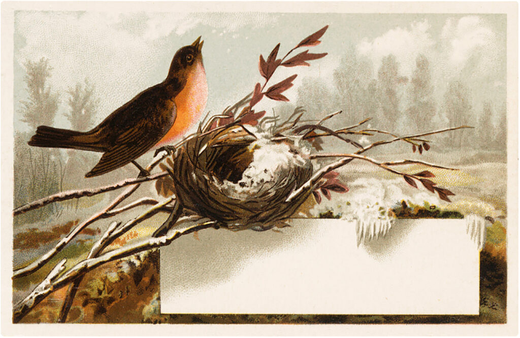 vintage winter robin nest label image