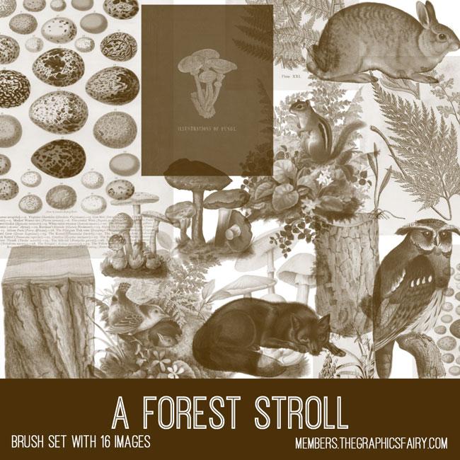 a forest stroll vintage ephemera brush set