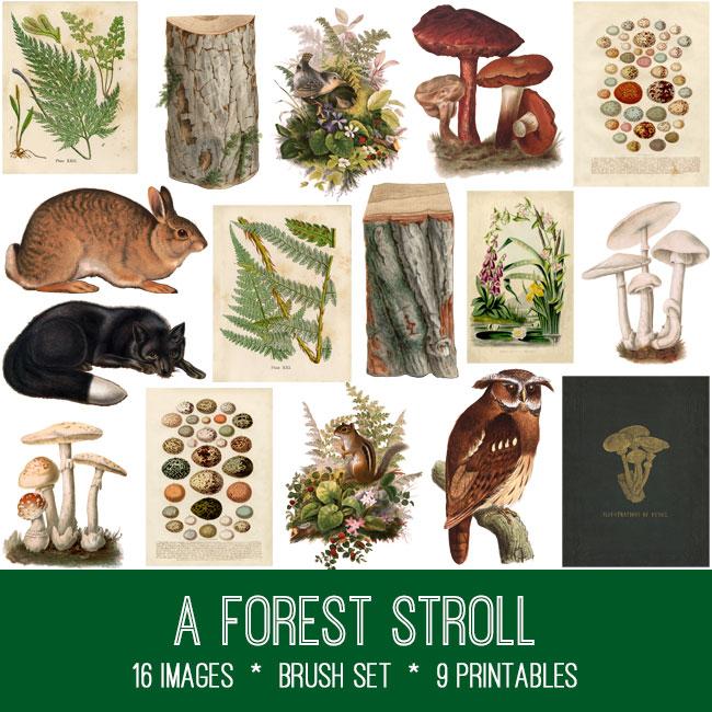 Forest Stroll ephemera vintage images