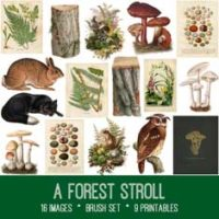 vintage forest stroll ephemera bundle