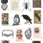 vintage poe's halloween ephemera digital image bundle