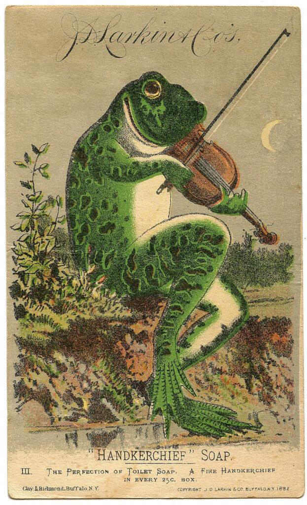 frog violin vintage illustration