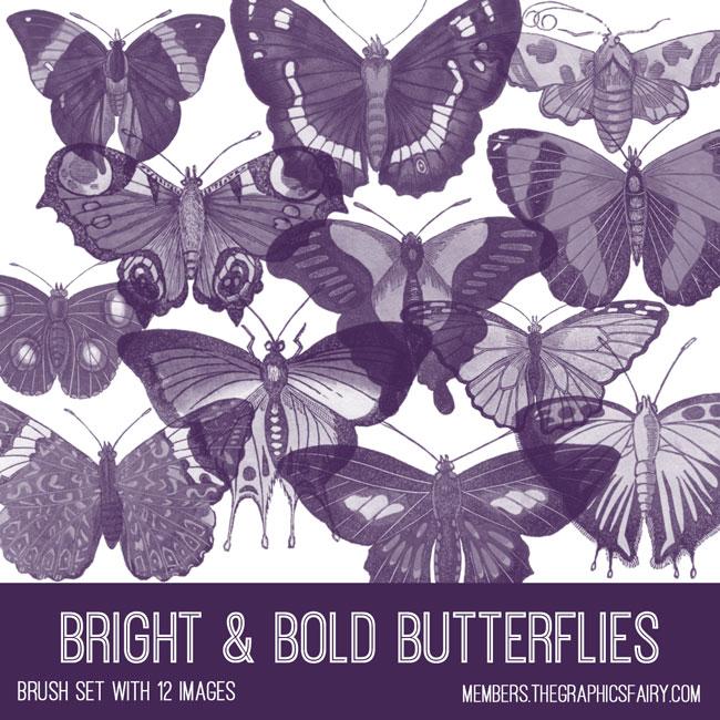 vintage bright & bold butterflies ephemera brush set
