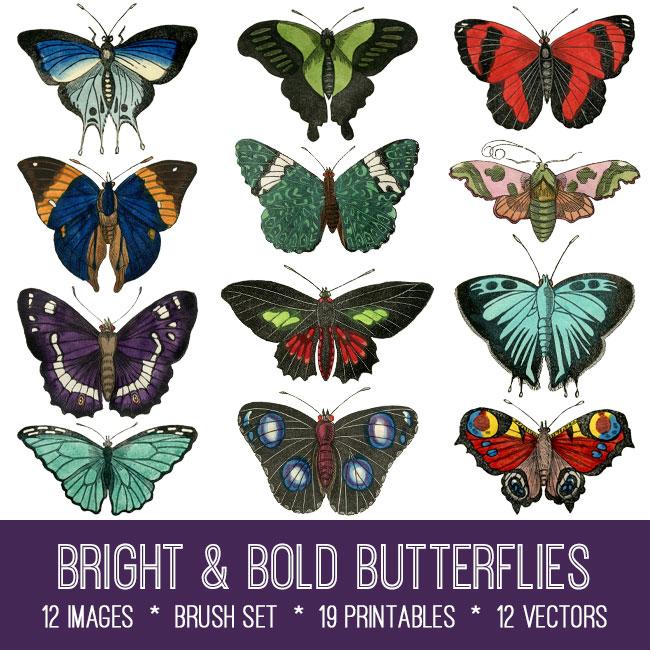 Bright & Bold Butterflies ephemera vintage images