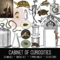 cabinet of curiosities vintage ephemera bundle