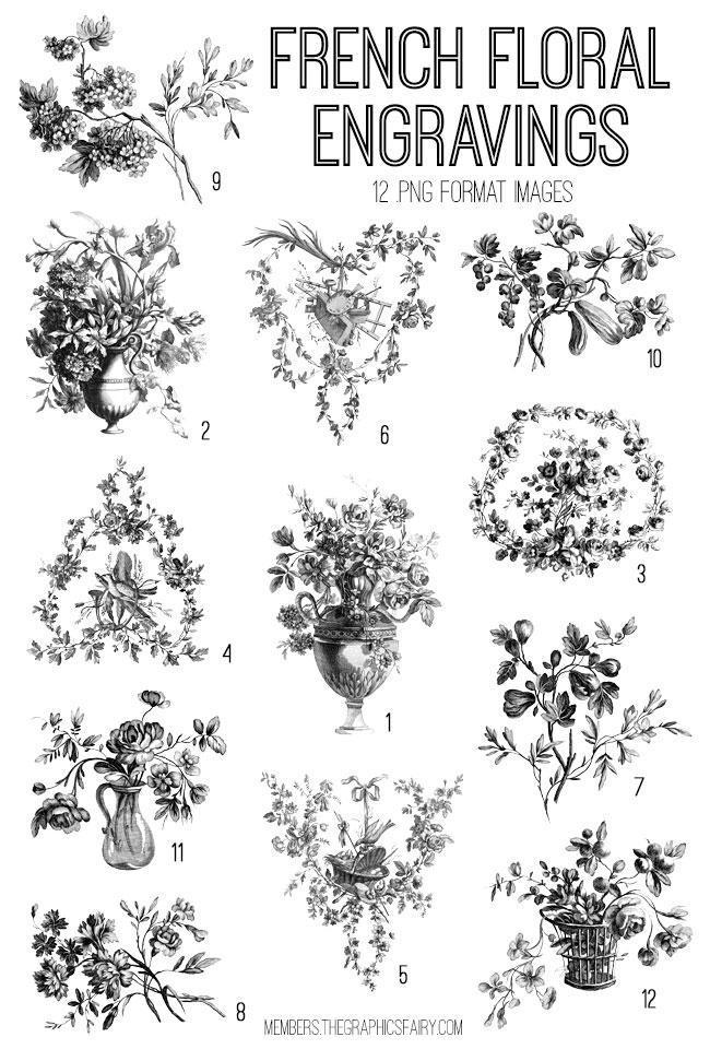 vintage French floral engravings ephemera digital image bundle