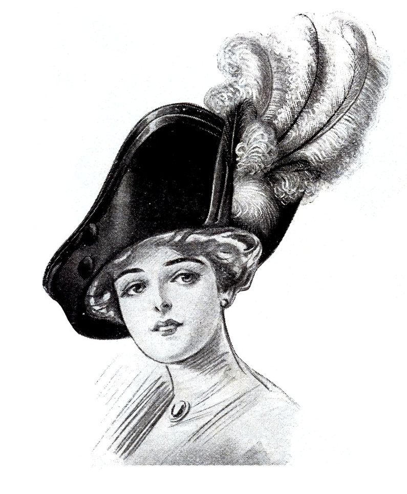 lady hat feathers clip art