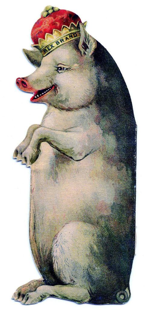 vintage pig king crown image
