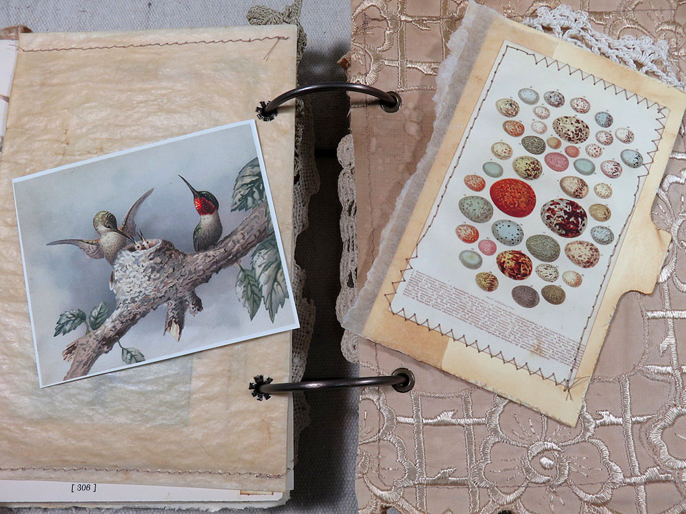 hummingbirds and egg print journal pages