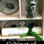Cabinet of Curiosities Junk Journal