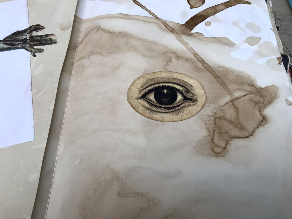 tea dyed page eyeball image