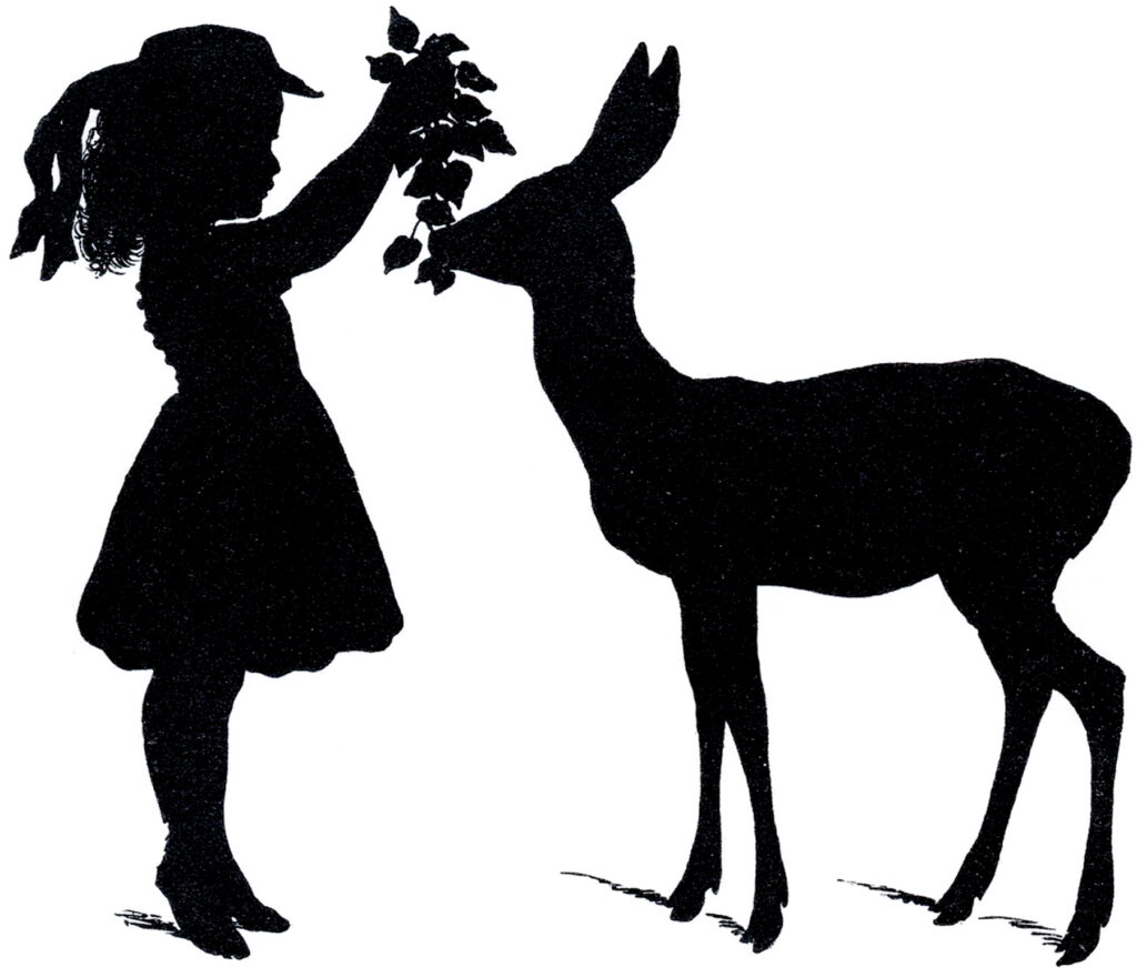 girl feeding deer silhouette image
