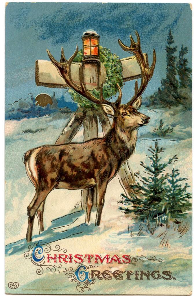 Christmas Reindeer Image