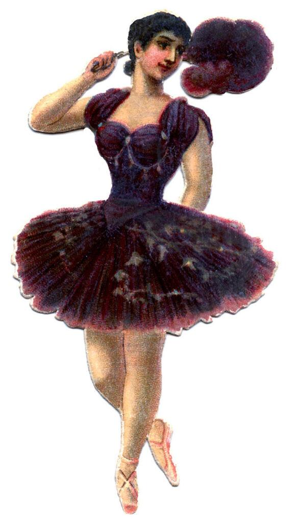 ballerina plum costume feathers image