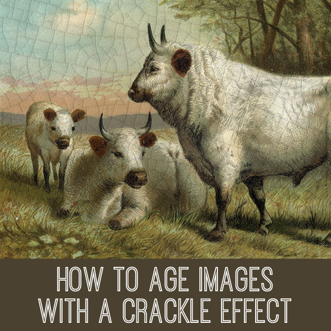 How to age images with crackle effect PSE tutorial