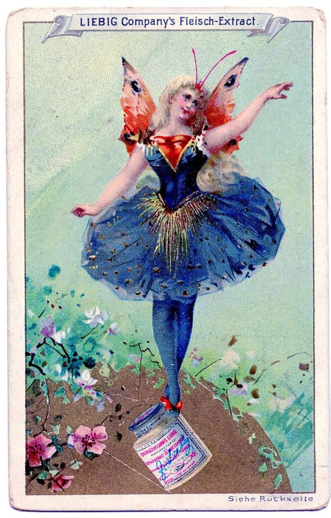 fairy butterfly wings ballerina illustration