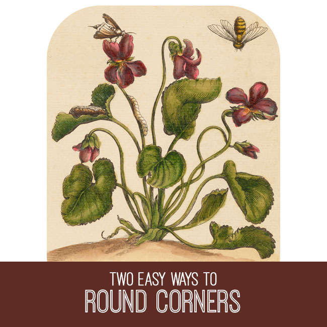 PSE tutorial two ways to round corners