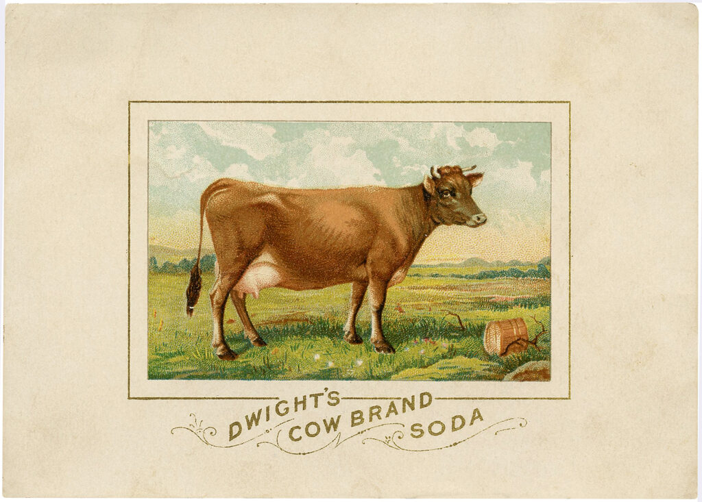 Cow meadow soap advertising image