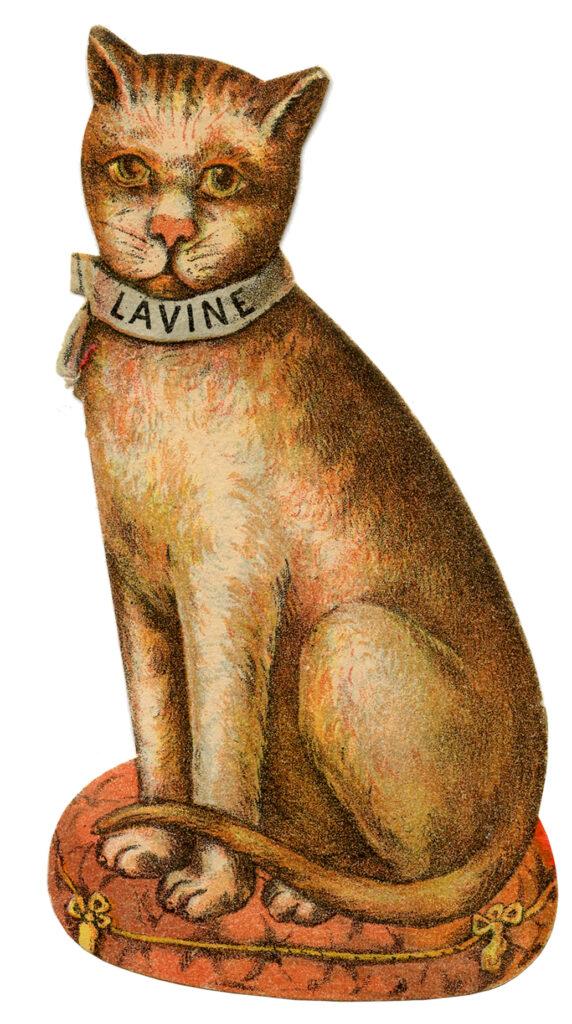 vintage cat vintage advertising clipart
