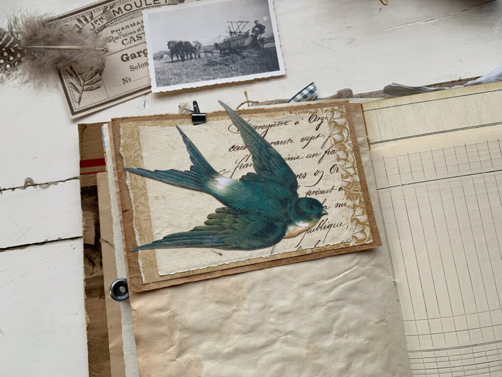 flying swallow journal page