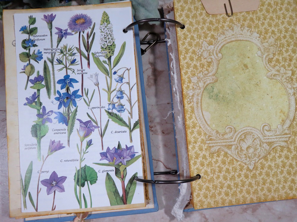 blue floral journal page
