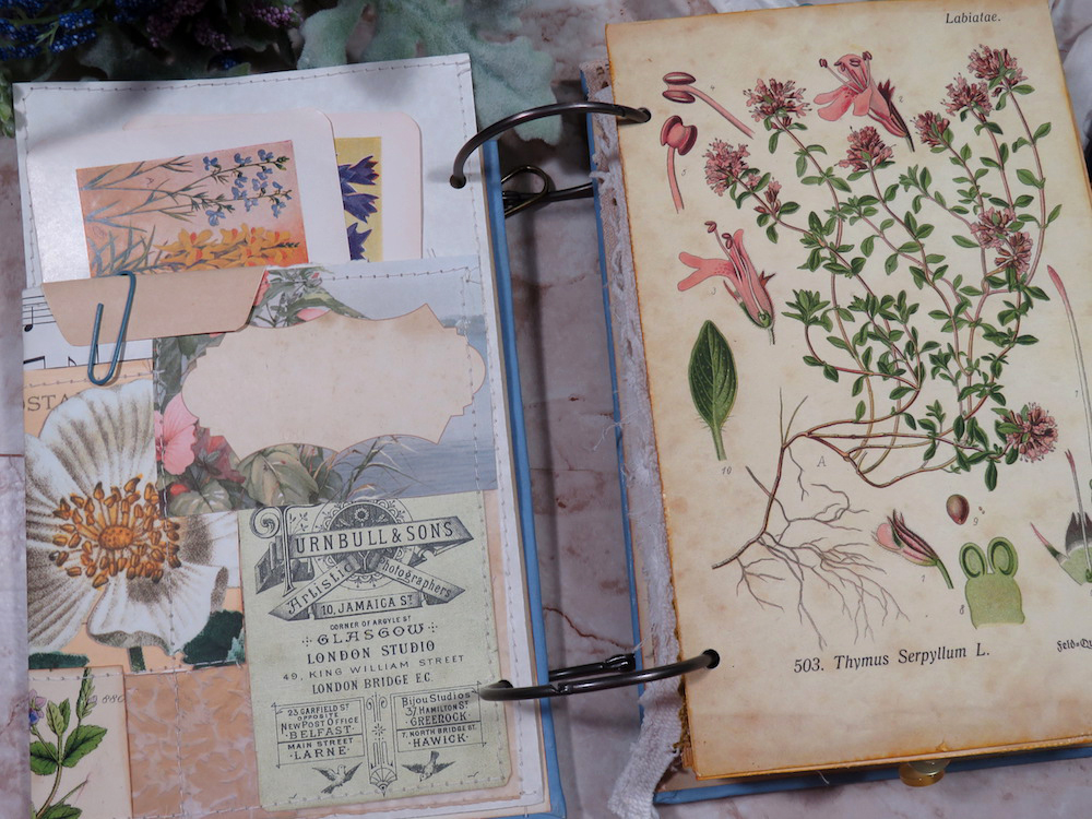 herbs bees junk journal ephemera page