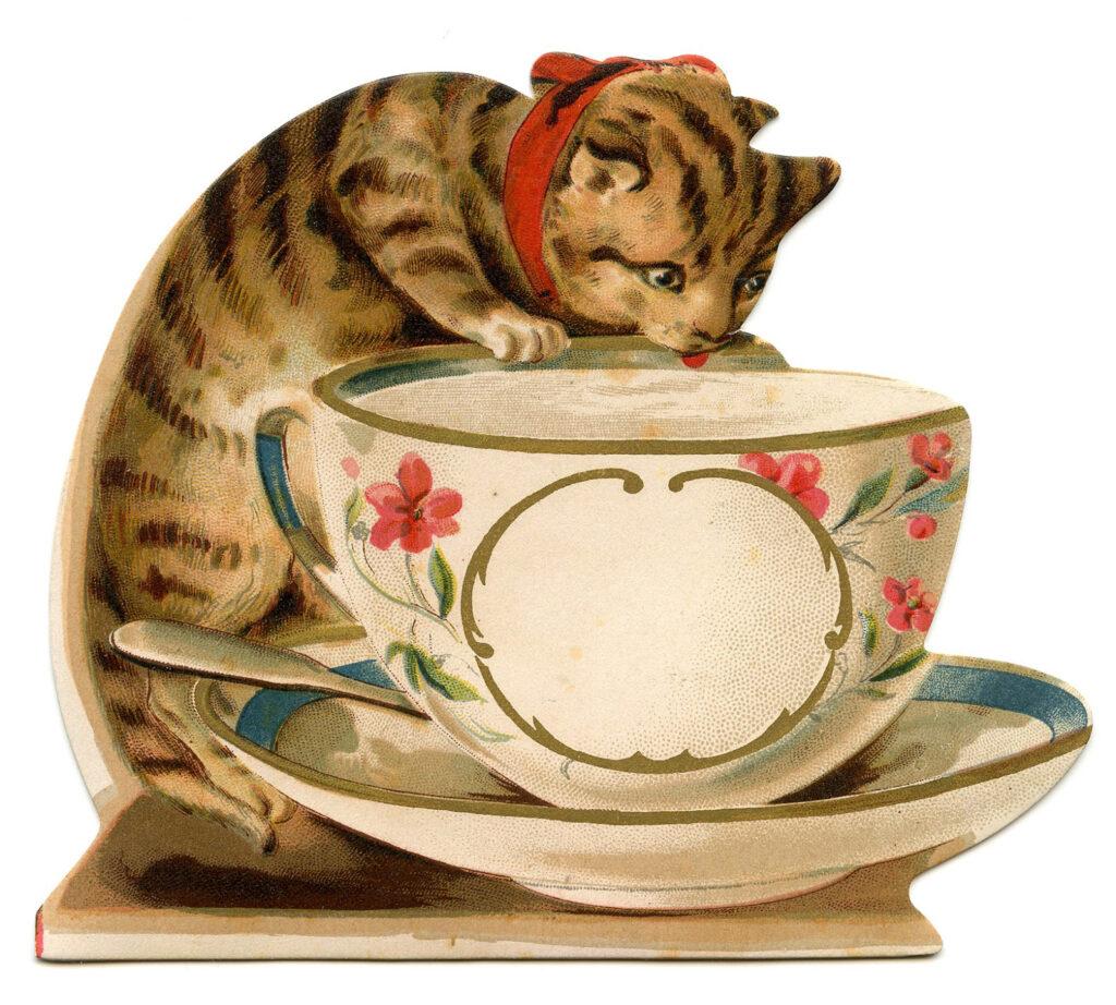 tabby cat tea cup vintage clipart