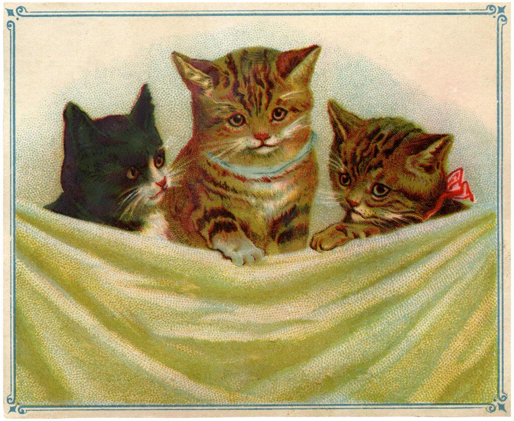 vintage kitties fabric drape image