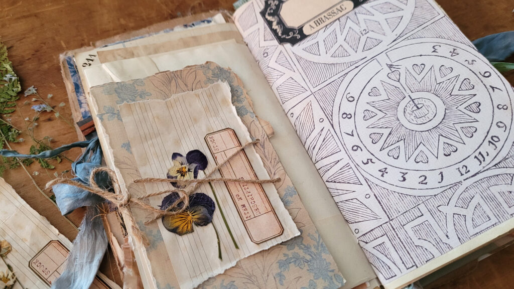 dried pansy specimen card