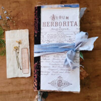 Botanist Junk Journal