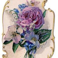 flowers lavender rose bouquet illustration