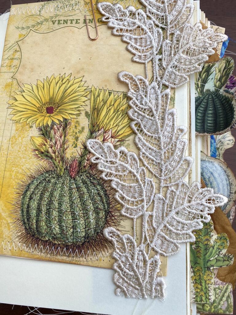 cactus flower image lace