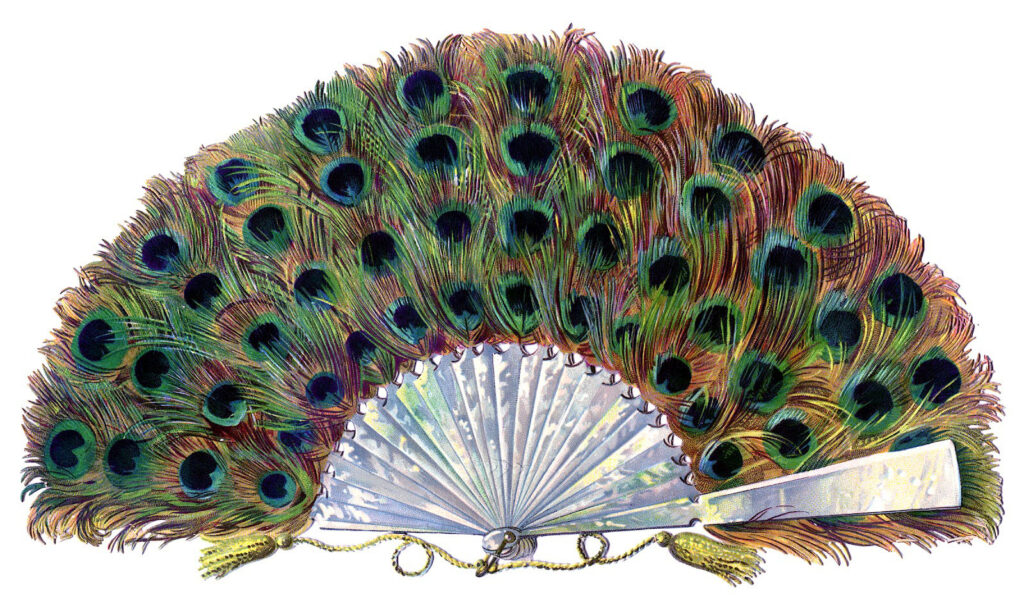 vintage peacock feather fan image