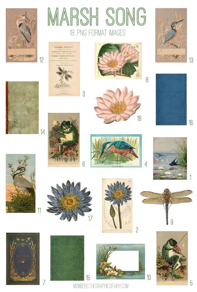 vintage marsh song ephemera digital image bundle