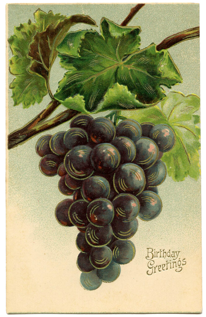 Happy Birthday Grapes Image