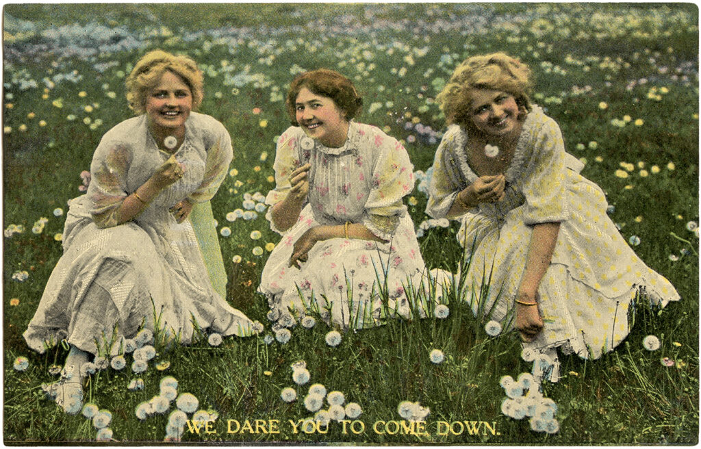 vintage ladies dandelions photo clipart
