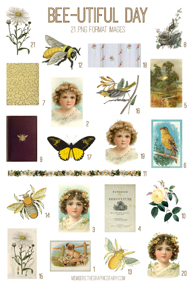 vintage bee ephemera digital image bundle