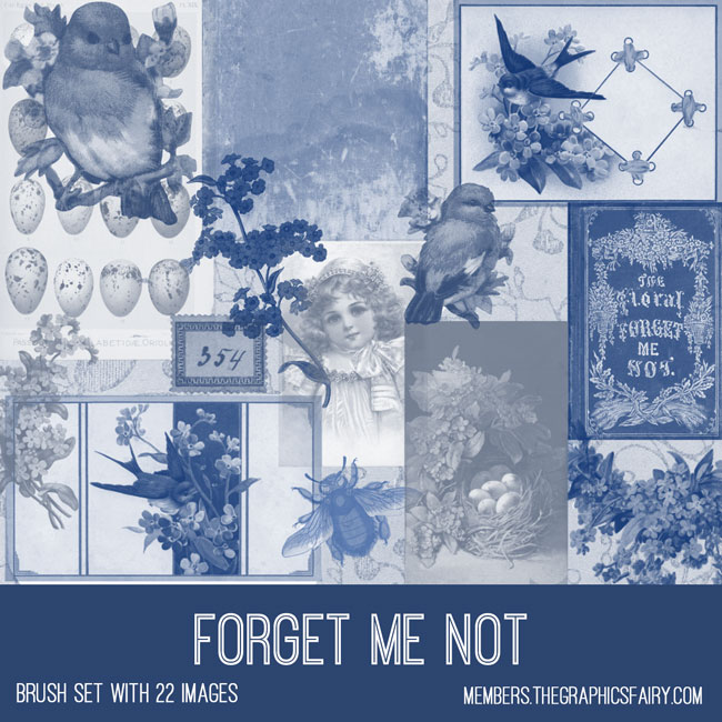 vintage forget me not ephemera brush set