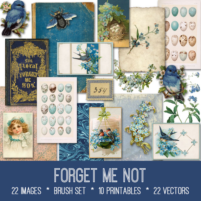 forget me not ephemera vintage images