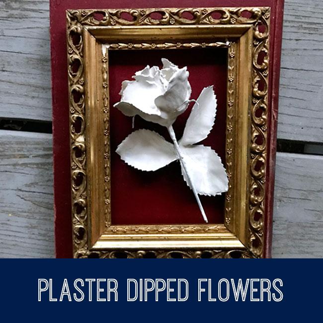 plaster dipped flowers tutorial